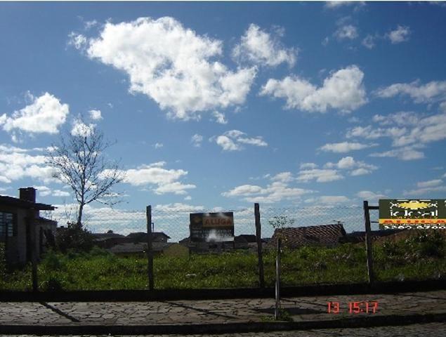 Terreno para alugar em , cod:I-022070 - Foto 6