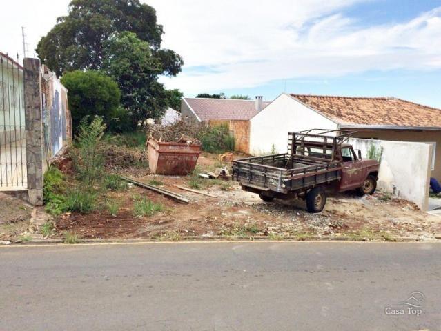 Terreno para alugar em Uvaranas, Ponta grossa cod:256