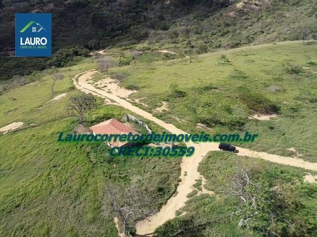 Fazenda Ipanema com 20 Alqueires em Pedra Azul-MG - Foto 5