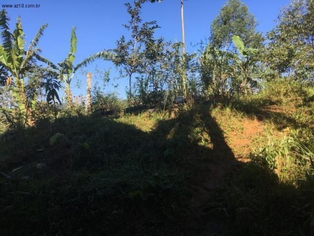 Sítio à venda em Luiz alves, Luiz alves cod:ST00001 - Foto 12