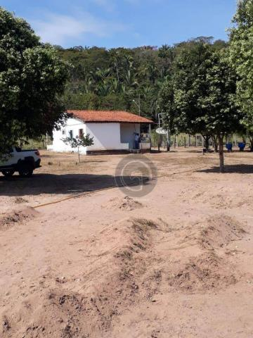 Chacara 40 hectares em mimoso - Foto 16