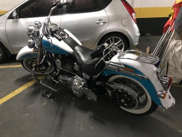 e4d651c392953 Harley-davidson Softail