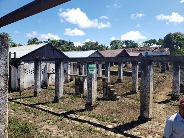 Ilhéus. Fazenda com 368 Hectares cultivo de cacau e gado - Foto 8