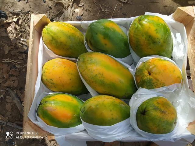 Vendo carga de frutas ?? - Foto 2