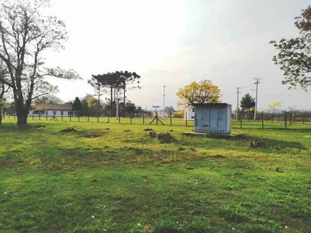 Terreno em Ponta Grossa - Foto 11