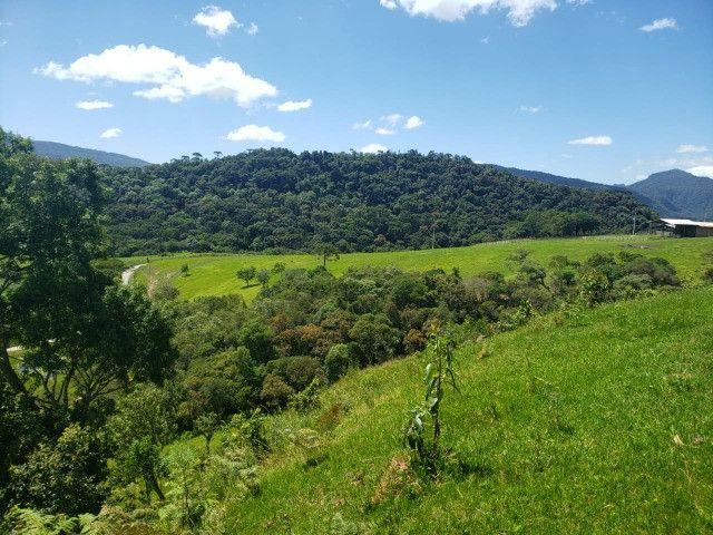Fazenda à venda em Bom Retiro - Foto 10