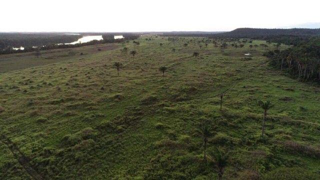 Fazenda 1.026 há (212 alq) pecuária de cria recria e engorda - Foto 3