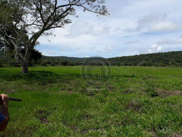Chacara 40 hectares em mimoso - Foto 18