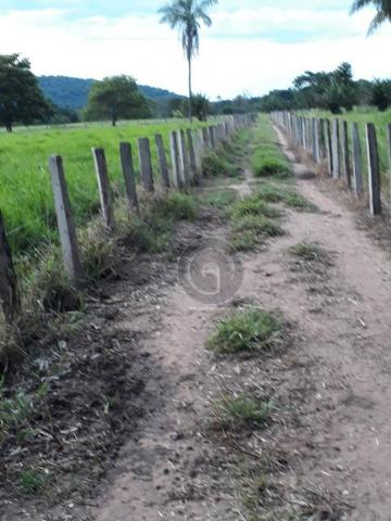 Chacara 40 hectares em mimoso - Foto 2
