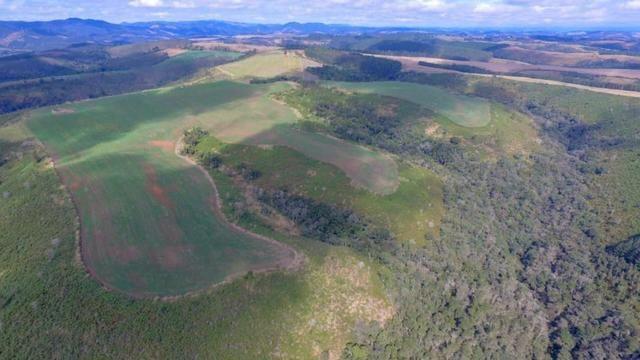 Fazenda (185 alqueires) - Cerro Azul - Foto 12
