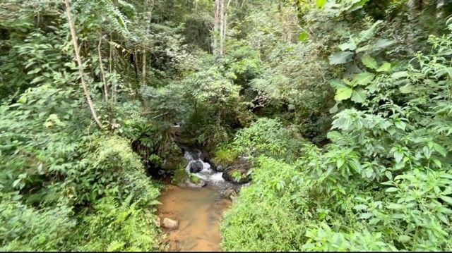 chacara em Rio Branco do sul - Foto 7