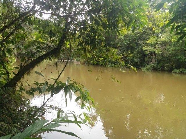 chacara em Rio Branco do sul - Foto 3