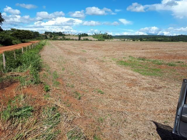 200 hectares, 20 km de Guarantã do Norte -MT - Foto 4