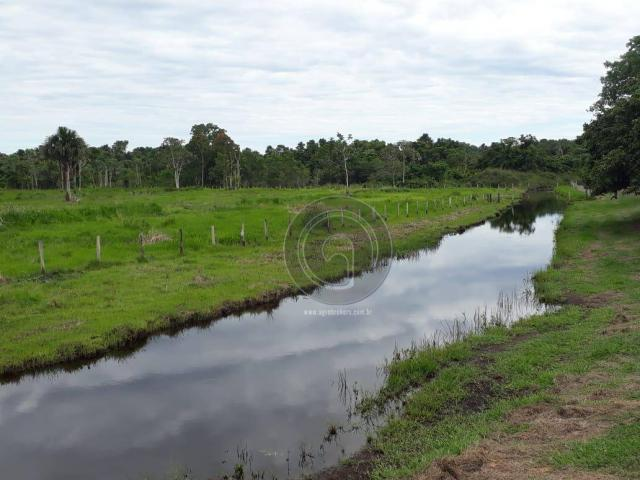 Chacara 40 hectares em mimoso - Foto 17