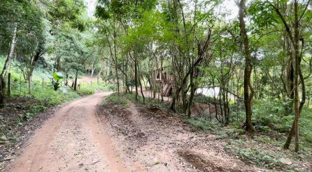 chacara em Rio Branco do sul - Foto 19