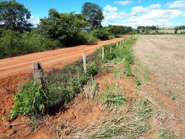 200 hectares, 20 km de Guarantã do Norte -MT - Foto 8