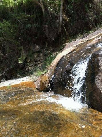 Fazenda rica em água ótimo para Gado - Cód 1505 - Foto 5