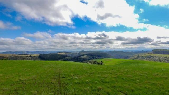 Fazenda (185 alqueires) - Cerro Azul