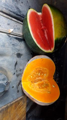 Vendo carga de frutas ?? - Foto 3