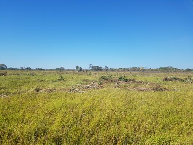 Fazenda 2500 ha Guaraí -TO - Foto 2