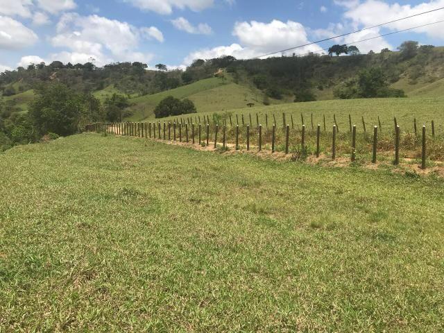 Fazenda pronta em Amargosa - Foto 3