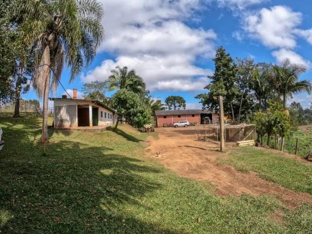 Fazenda (185 alqueires) - Cerro Azul - Foto 13