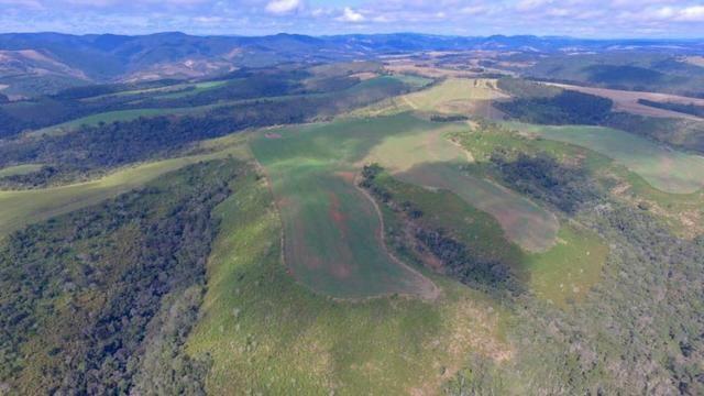 Fazenda (185 alqueires) - Cerro Azul - Foto 6