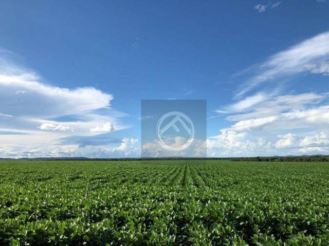 Fazenda rural à venda, Marmeleiro - PR - FA0031. - Foto 3