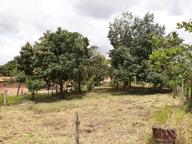 Terreno em Leandrinho 1.000 m² - R$ 25.000,00 - Foto 3