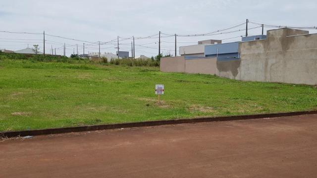 Terreno Jardim Nova Andradina