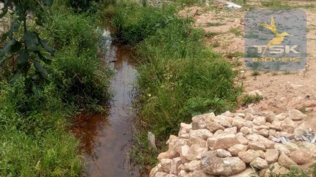 Chácara Lagoa dos Ferreira Mandirituba. CH0289 - Foto 9