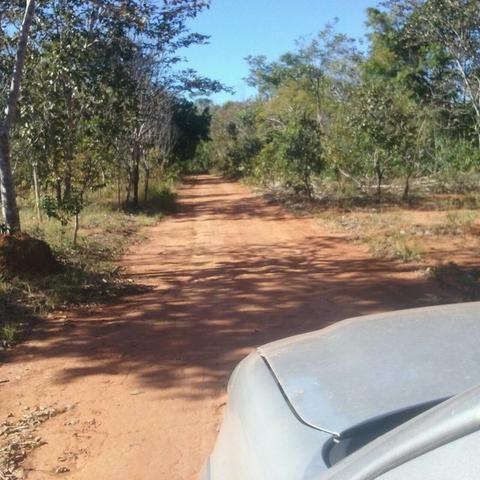 Fazenda Município de Rio Sono – TO com 668 hectares