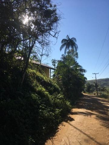 Sítio à venda em Luiz alves, Luiz alves cod:ST00001 - Foto 10
