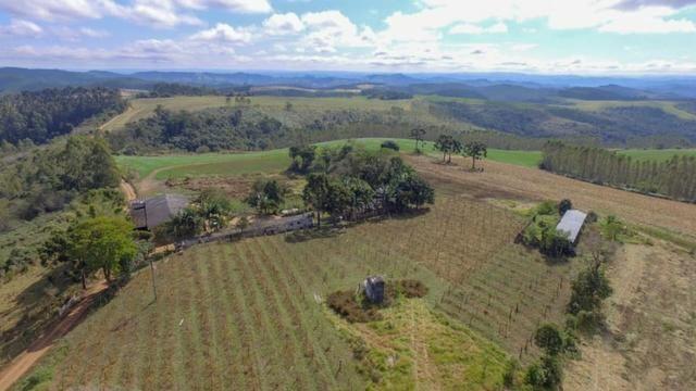 Fazenda (185 alqueires) - Cerro Azul - Foto 5
