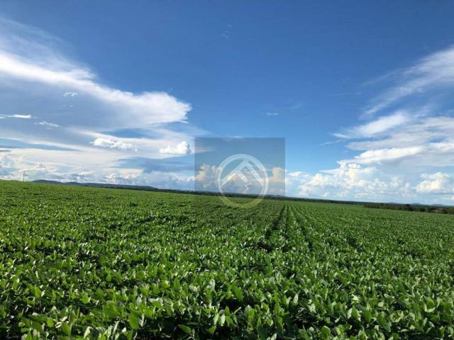 Fazenda rural à venda, Marmeleiro - PR - FA0031.