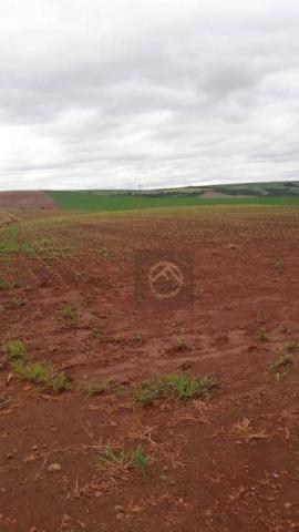 Fazenda à venda, 5783800 m² - São Domingos - Marmeleiro/PR