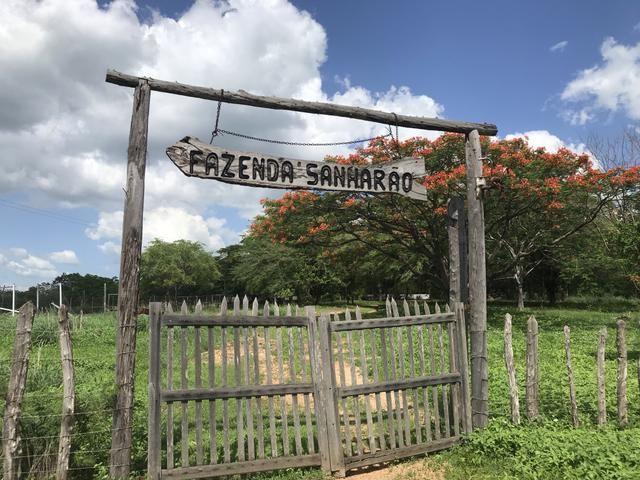 Vende-se Fazenda Que possui MINÉRIO PARA A FABRICAÇÃO DE CERÂMICA as Margens da BR 222 - Foto 4