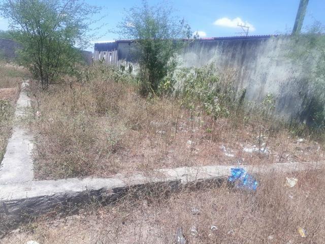 Vende-se um terreno em Ipirá no ipirazinho 8x15