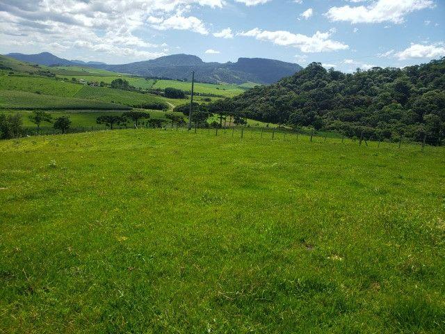 Fazenda à venda em Bom Retiro - Foto 2