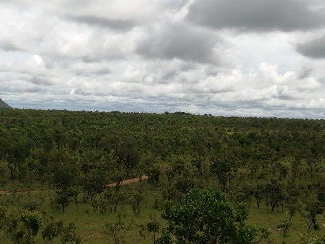 Fazenda 1.026 há (212 alq) pecuária de cria recria e engorda - Foto 4