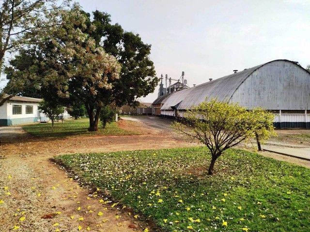 Terreno em Ponta Grossa - Foto 2