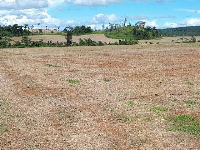 200 hectares, 20 km de Guarantã do Norte -MT - Foto 6