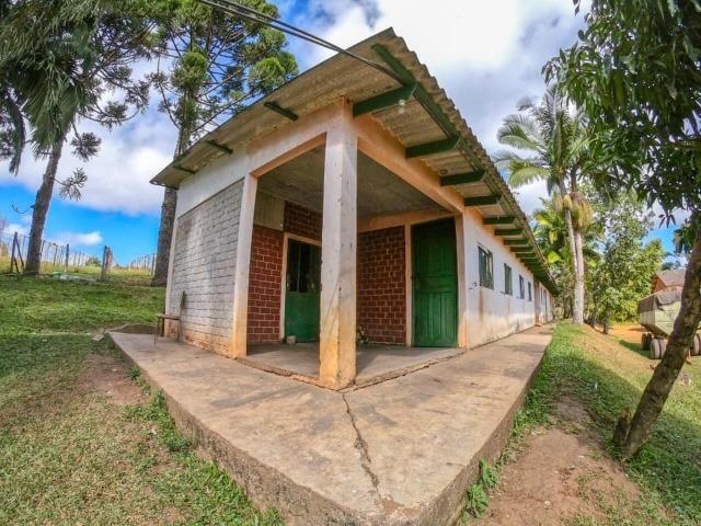 Fazenda (185 alqueires) - Cerro Azul - Foto 10