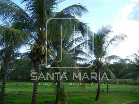 Chácara para alugar com 5 dormitórios em Indeterminado, Ribeirao preto cod:26812 - Foto 17