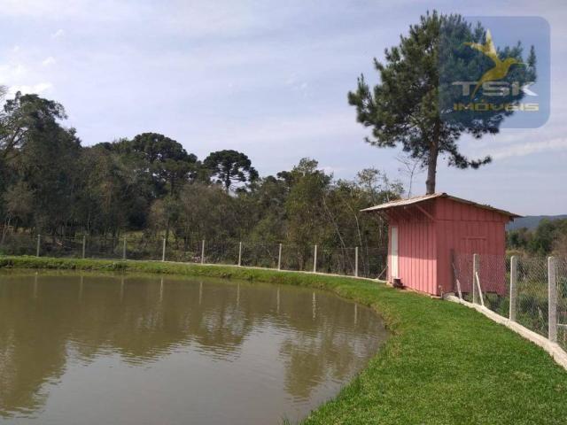 Chácara Lagoa dos Ferreira Mandirituba. CH0289