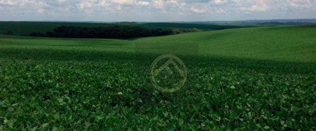 Fazenda rural à venda, Honório Serpa.