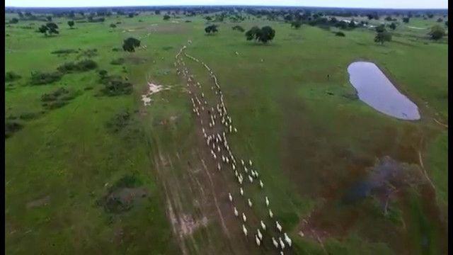 Fazenda em Corumbá - MS. 19.397 hectares - Foto 5