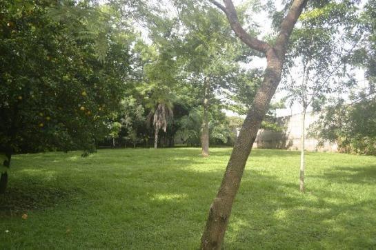 Chácara de 9.237 m² - Vila Morais - Próximo do Jd. Novo Mundo - Foto 7