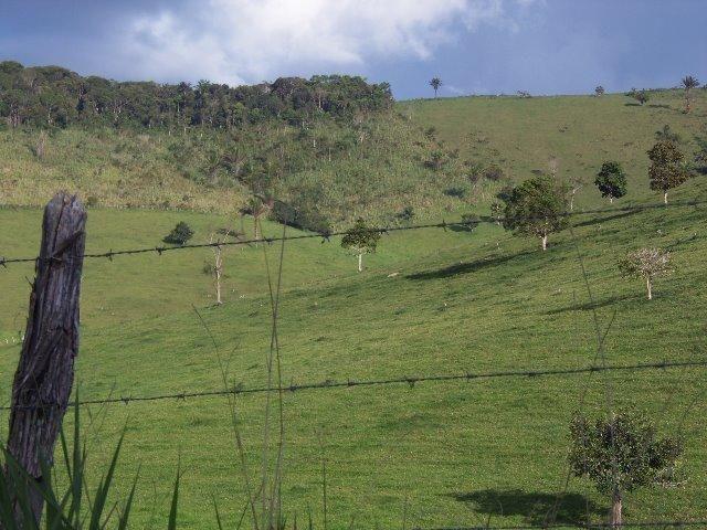 Fazenda com 700 Hectares em Barra de Guabiraba (Cód.: f20568) - Foto 4