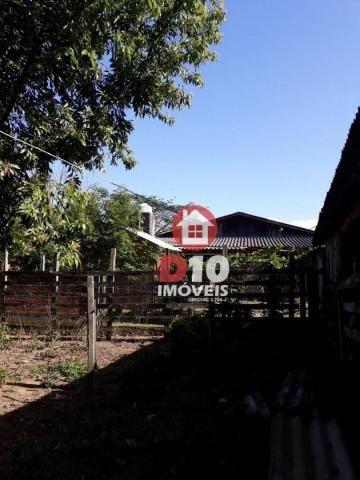 Chácara com 4 dormitórios à venda, 36000 m² por R$ 500.000 - Vila Santa Catarina - São Joã - Foto 5